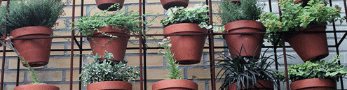 pots-fleurs-sur-grlle-exterieur